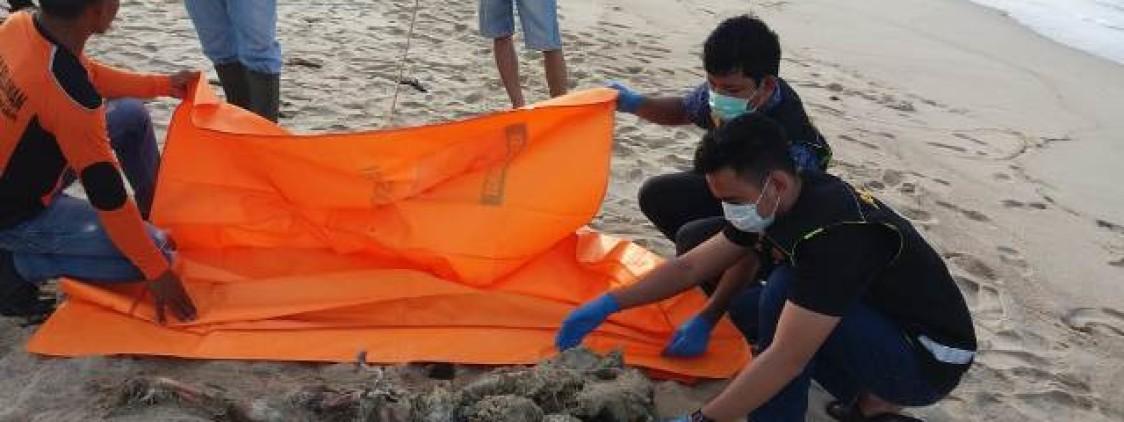 Pemulung Temukan Mayat tanpa Identitas dipersisir Pantai Gelam